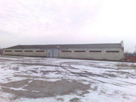 продажа склада номер C-74661 в Ананьеве, фото номер 7
